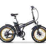 Argento Bicicletta Elettrica Minimax Ruote Fat Pieghevole