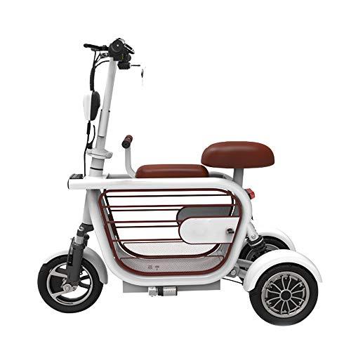 HSJCZMD Triciclo Elettrico